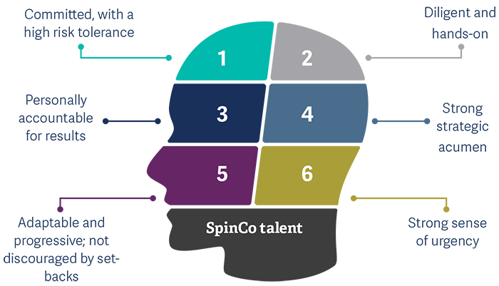 Five leadership challenges in spin-off_pic2.jpg